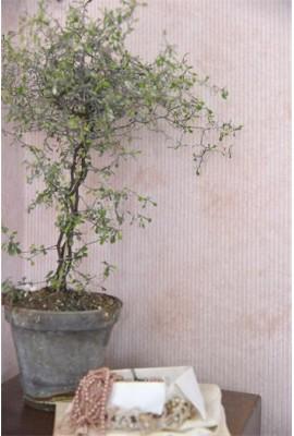 Rózsaszín csíkos antikolt tapéta